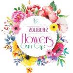 Żoliborz Flowers Gym Cup