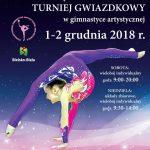 XXI Międzynarodowy Turniej Gwiazdkowy W Bielsko Białej.